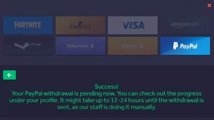 FREESKINS PAYMENT SYSTEM